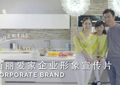 佰丽爱家企业形象宣传片